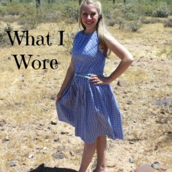 What I Wore ~ Blue Gingham